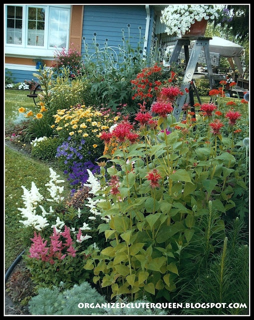 Front Yard Flower Garden Ideas best 10+ front yard flowers ideas on pinterest   diy landscaping