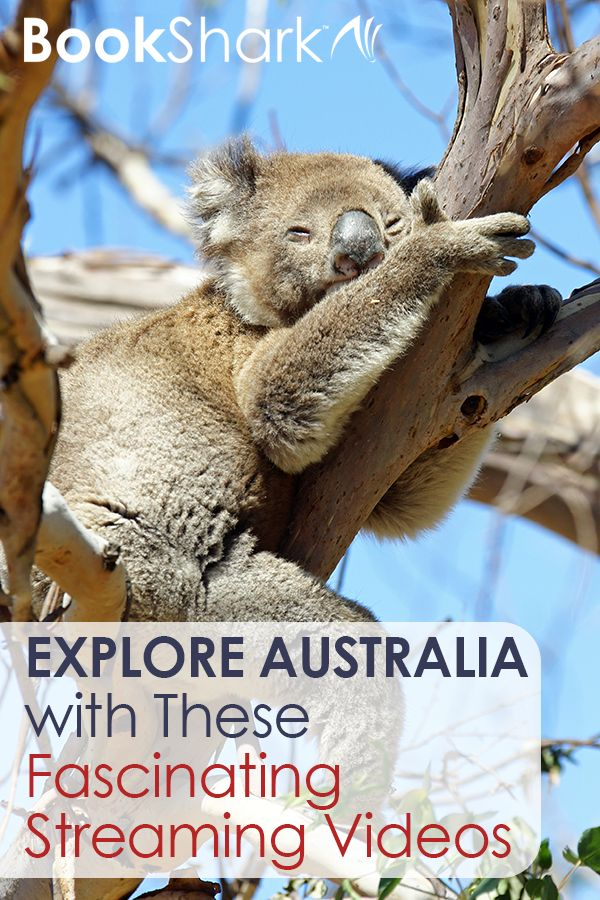 Explore Australia with These Fascinating Streaming Videos • Perfect for BookShark Level 5 Eastern Hemisphere