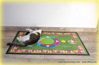 CARPETTHERAPY-BONY http://www.49lley.com/p/183/carpettherapy-bony