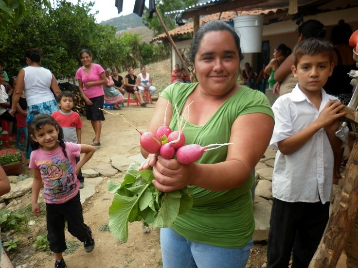 Examining poverty and hunger from the ground up