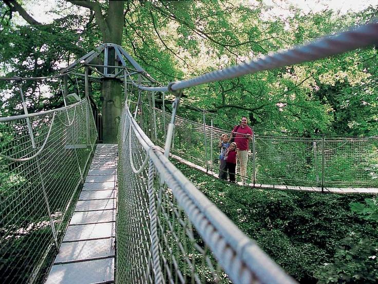 Tree Top Walking projektet har fået Teknologisk Instituts blå stempel og var i 1999 Syd Slots største nyskabelse.