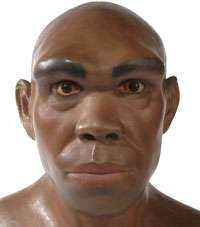Homo heidelbergensis lived around 600,000 to 250,000 years ago. They were distinctly human in physique and behaviour and evidence suggests these ancient people were accomplished tool makers and could skillfully butcher large animals.