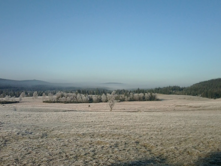Frosty morning in Izery Mountains. Poland.