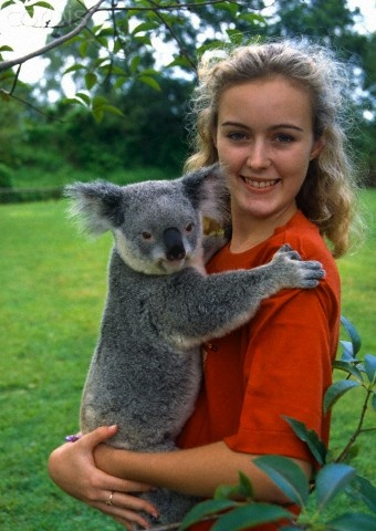 Hold a Koala Bear... I will do this before I die.