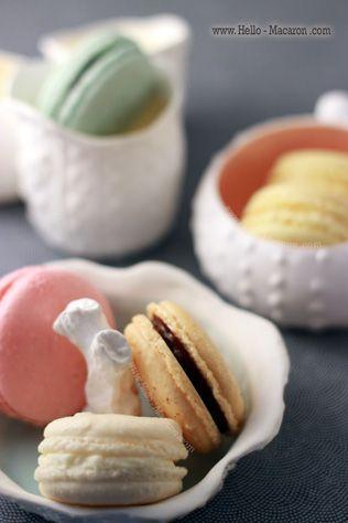 Hello! Macaron, vanillia macaron, strawberry macaron, chocolate apricot macaron, lemon macaron, blueberry macaron, Austin TX