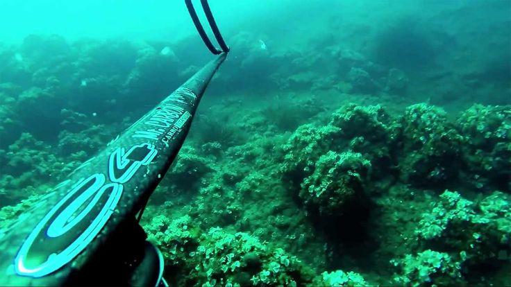 Video Pesca in Apnea: Orata strappata all'aspetto (Isola d'Elba)