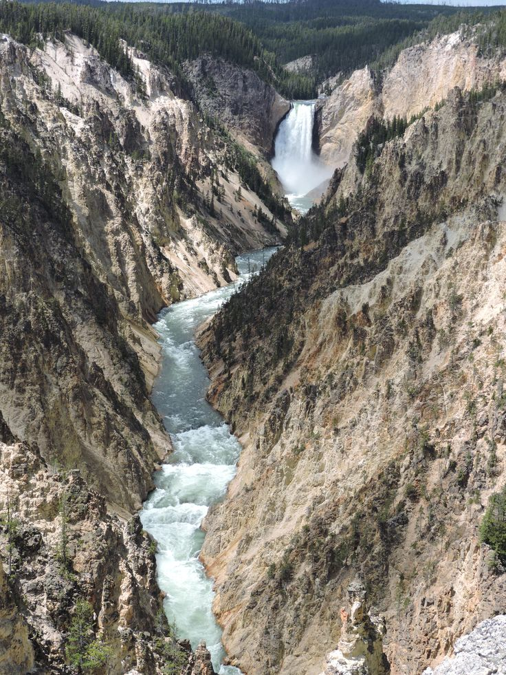 Grand Canyon Pa Directions%0A Yellowstone National Park  lower falls at the grand canyon of the  Yellowstone