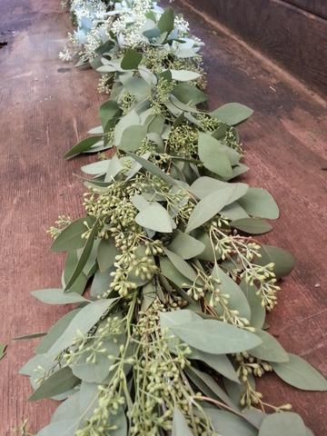 Specialty-made garlands with fresh foliage. Around $9 / ft
