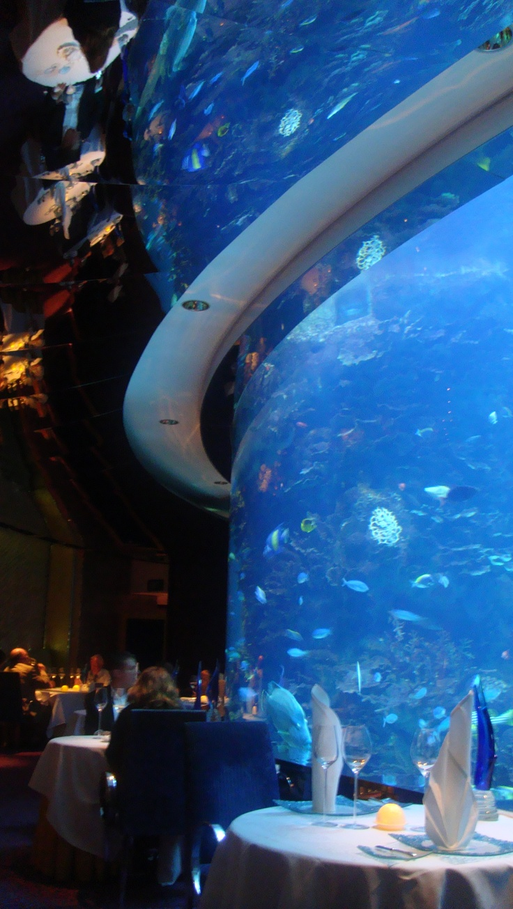 Fish aquarium in uae - Aquarium Lamp