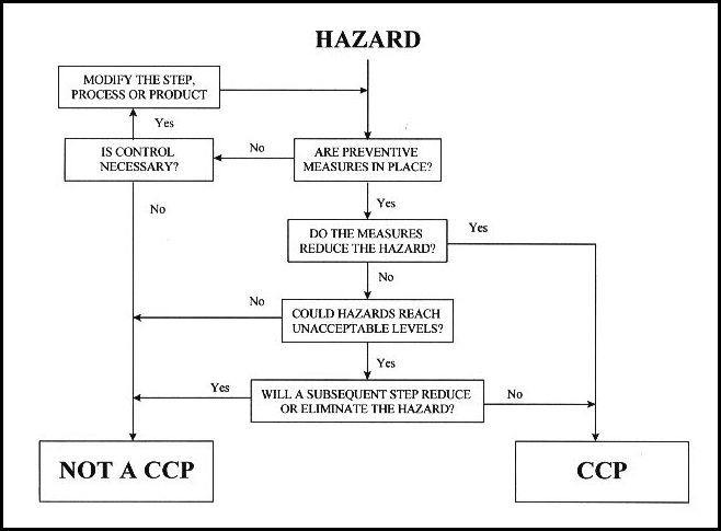 12 best HACCP images on Pinterest Cooking, Management and Templates - chemistry chart template