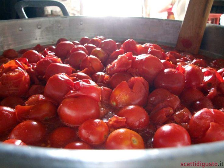 conserve-di-pomodoro-02