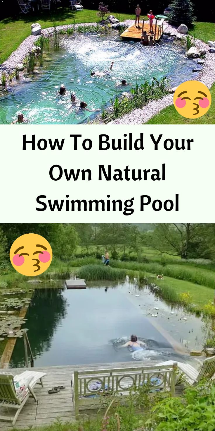How To Build Your Own Natural Swimming Pool In Your Backyard In Just 7 Steps Natural Swimming Pool Natural Swimming Ponds Swimming Pools Backyard diy natural pool