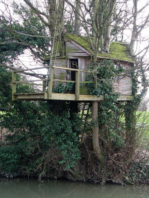 91 best images about houses tree houses on pinterest for Treeless treehouse