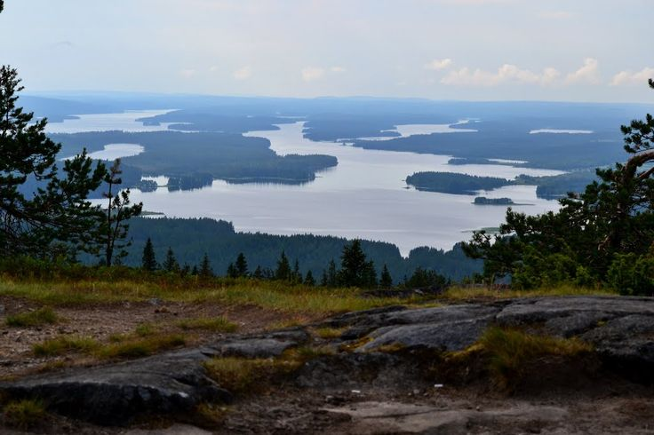 Lake and forest landscape seen from the top of Iivaara (Kuusamo, 20140715)