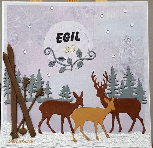 Egil's 80th birthday.  He likes skiing and artic nature. www.facebook.com/PysseloPynt Marie-AnneS
