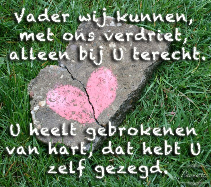Vader wij kunnen, met ons verdriet, alleen bij U terecht. U heelt gebrokenen van hart, dat hebt U zelf gezegd.