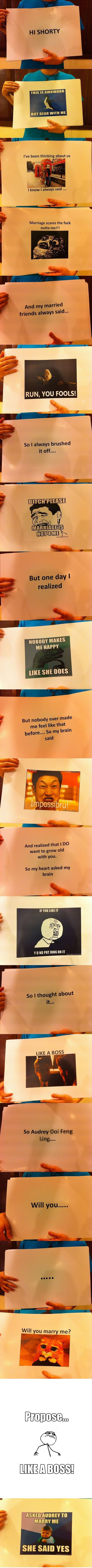 adorable! meme proposal!: Like A Boss, Meme Proposal, Stuff, Awesome, Proposals, Funnies, So Funny