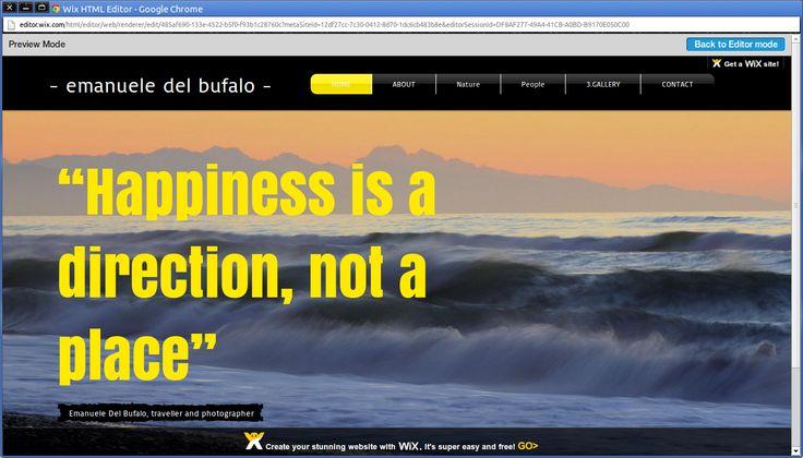 Happiness is a direction, not a place - La felicità è una direzione, non un luogo