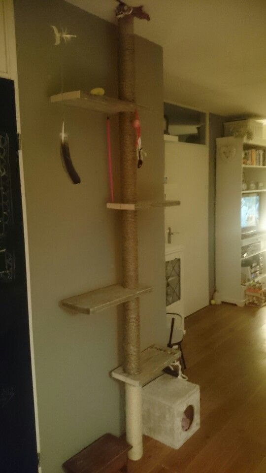 Steigerhouten krabpaal geklemd tussen vloer en plafond voorzien van steigerhouten planken en helemaal voorzien van touw.