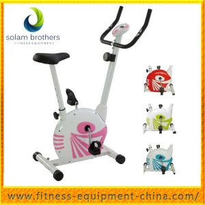 White Black Magnetic Exercise Bike for Sale (SEB-605) on Made-in-China.com