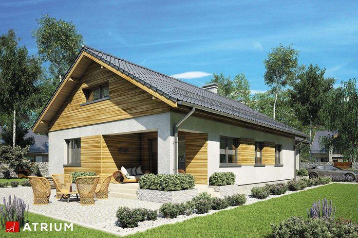 Projekty domów - Projekt domu z poddaszem LEO - wizualizacja 1
