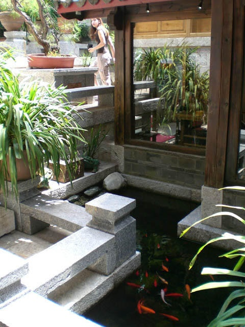 1000 images about zen inspired koi pond ideas on for Koi zen facebook