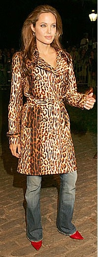 Angelina Jolie ~ fabulous in animal print and red shoes
