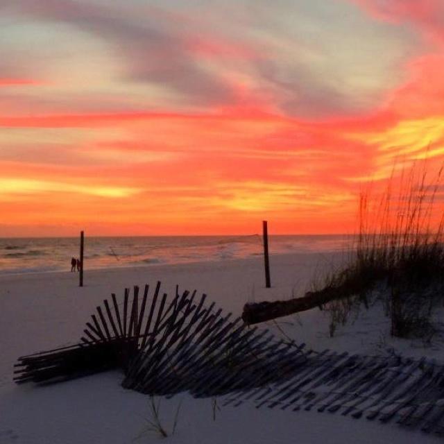 Vacation In Perdido Key Fl: 1015 Best Beach: Pensacola Beach & Perdido Key Images On
