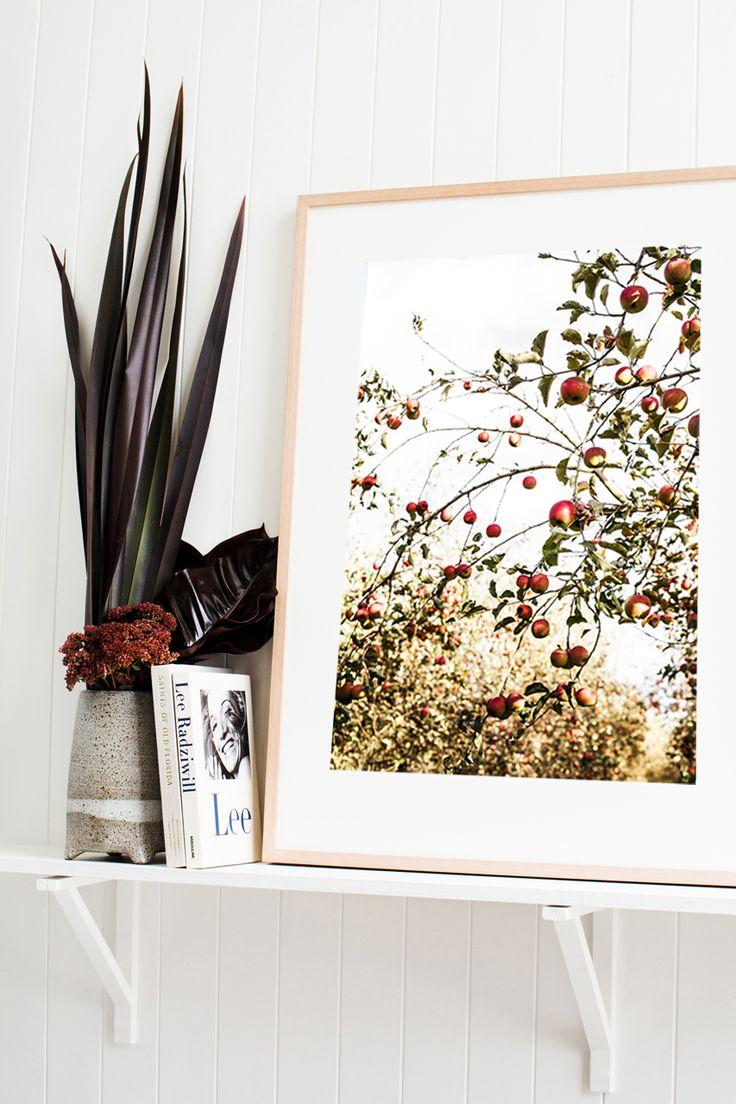 'Country Apples' Photographic Print © Kara Rosenlund