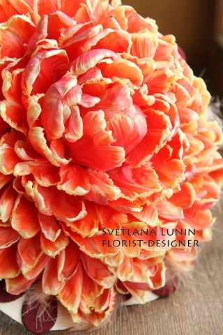 (30) Одноклассники.  Composite bouquet of parrot tulip petals