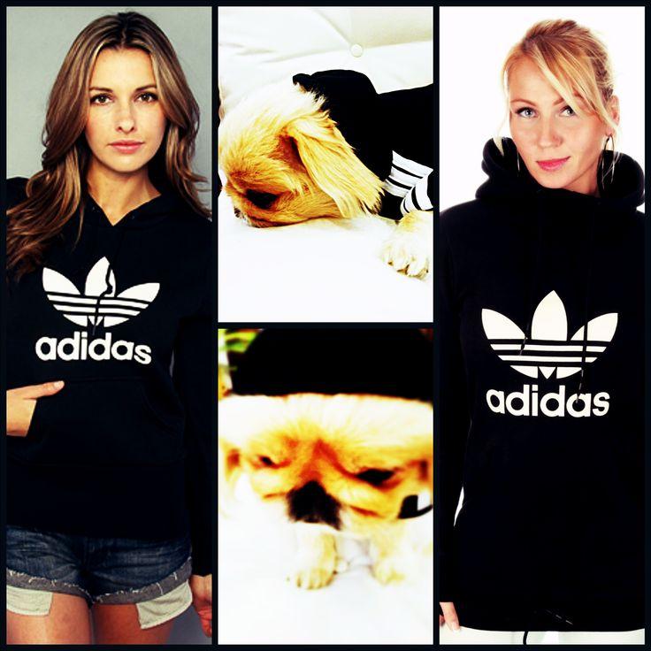 Moda Köpek Kıyafetleri Köpek Modası Köpek Modası Köpek Giysileri Köpekler adidas adidog  Dog Clothes Pet Clothes Panda Sweatshirt black white yorkie pekingese