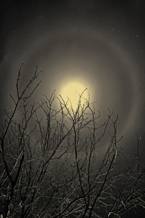 """The Moon and the North Wind by New Jersey, USA photographer, Geoffrey Agrons. He is, by profession, a radiologist, who feels """"drawn towards a world suffused with natural light""""."""