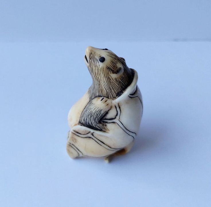 """Japanese Mountain Mole Talpidae with Beady Eyes and with Leaf Covered its back Netsuke Japaneese Netsuke. It is only my assumption and you better to check it with experts on mammals. Length: 1"""" (~ 3 cm). 
