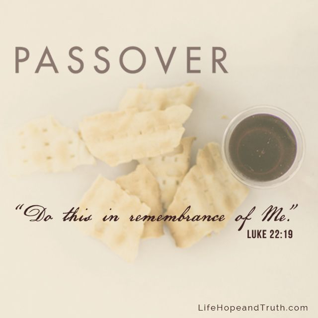 Image result for image of Luke 22:19do this in remembrance of my death