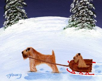 Border Collie cucciolo di cane stampa di Arte Folk di ToddYoungArt