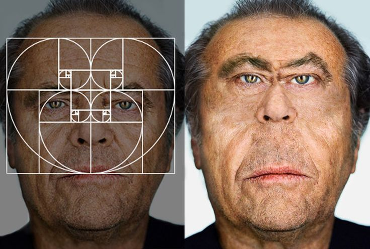the golden ratio turns famous faces into fibonacci celebrities