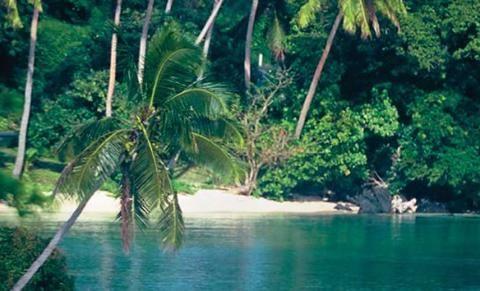 Fiji Pamm Travel, un vero tesoro del Pacifico