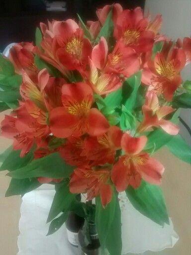 E vejo flores em você! :)