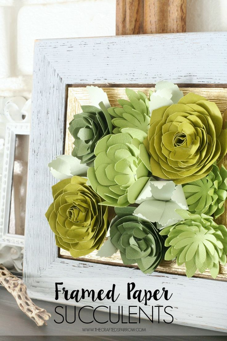 Framed Paper Succulents by The Crafted Sparrow. #CricutEverywhere