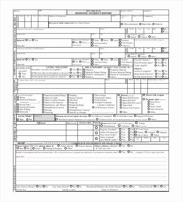 Fake Accident Report Template Elegant Pany Vehicle Accident Report