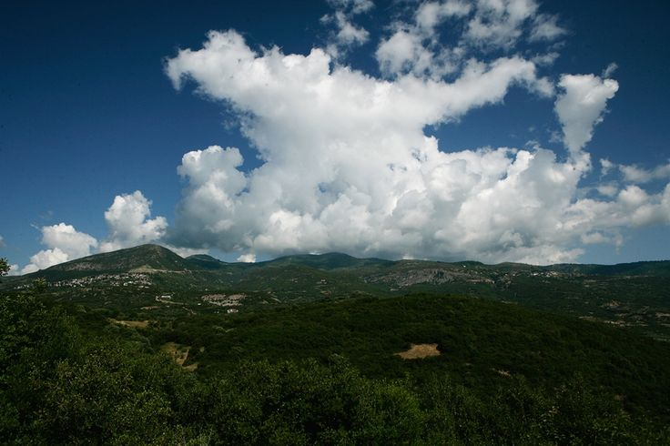 The Home of the Olympian Gods #rapsani #tsantali #wine #adventure #epxerience #oenotourism #Greek #Mythology
