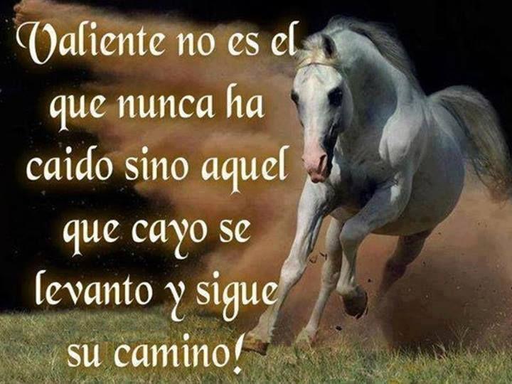 valiente no es aquel que nunca ha caido, sino aquel que cayo, se levanto y sigue su camino.