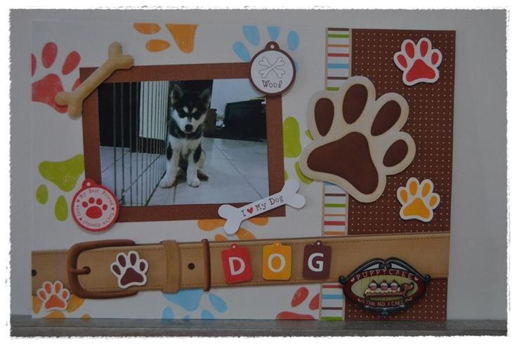 a cute husky in a friend house ^^