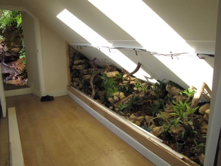 die besten 25 tortoise vivarium ideen auf pinterest schildkr ten lebensraum haustier. Black Bedroom Furniture Sets. Home Design Ideas