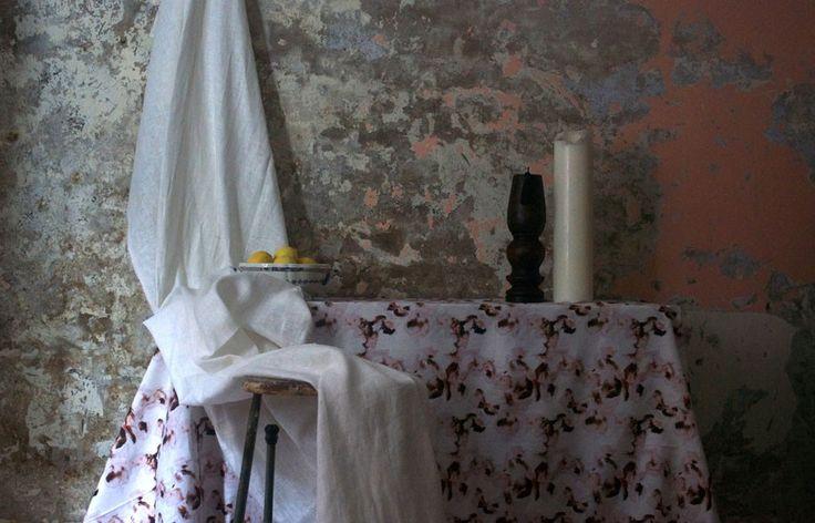 Rouse Phillips | Habitus Living