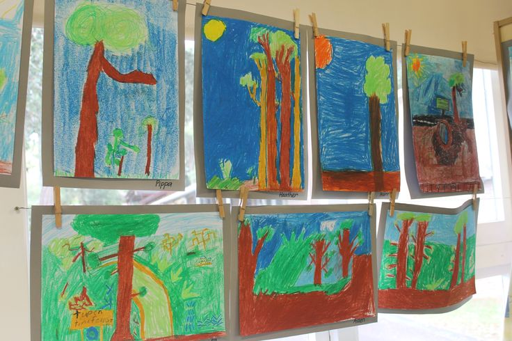 Observational drawings of our turpentine forest