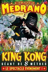 Spectacle CIRQUE MEDRANO : KING KONG, LE ROI DE LA JUNGLE (ANGERS)