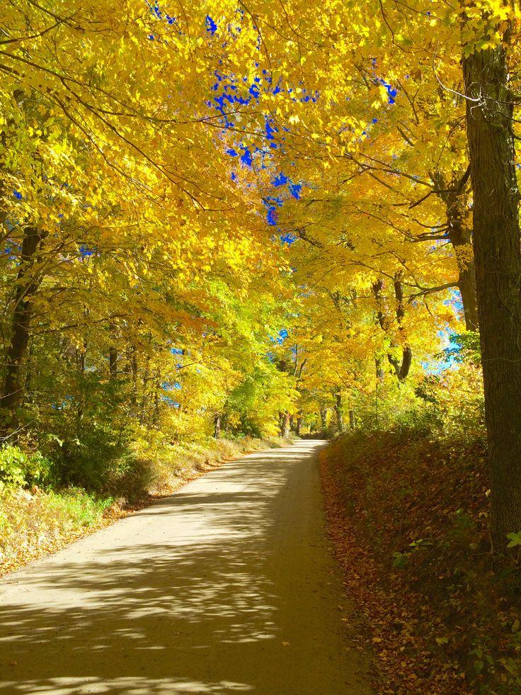 Autumn 2015, Washington Depot, Connecticut, USA