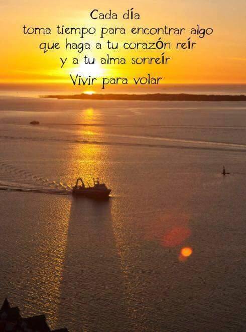10  images about vivir para volar    on pinterest