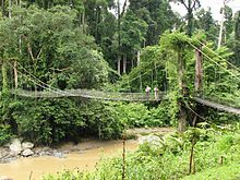 Danum Valley Conservation Area - Wikipedia, the free encyclopedia